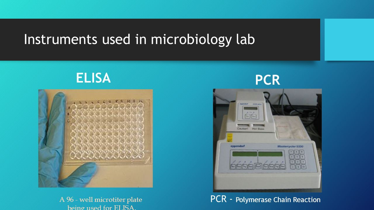 Instruments used in microbiology lab