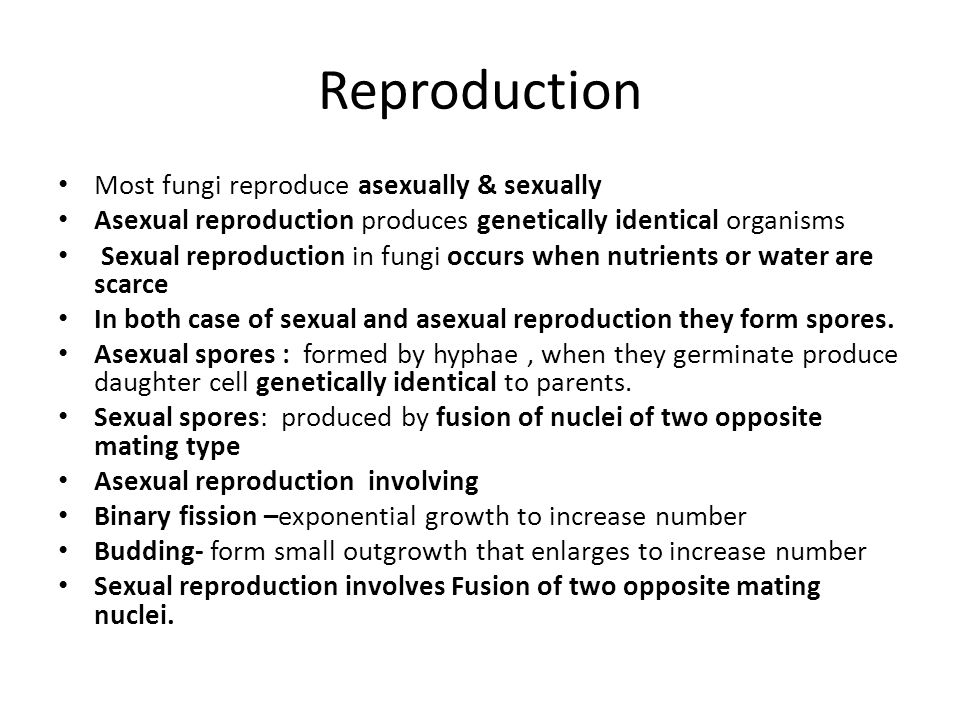 Asexually produced daughter cells are pic 766