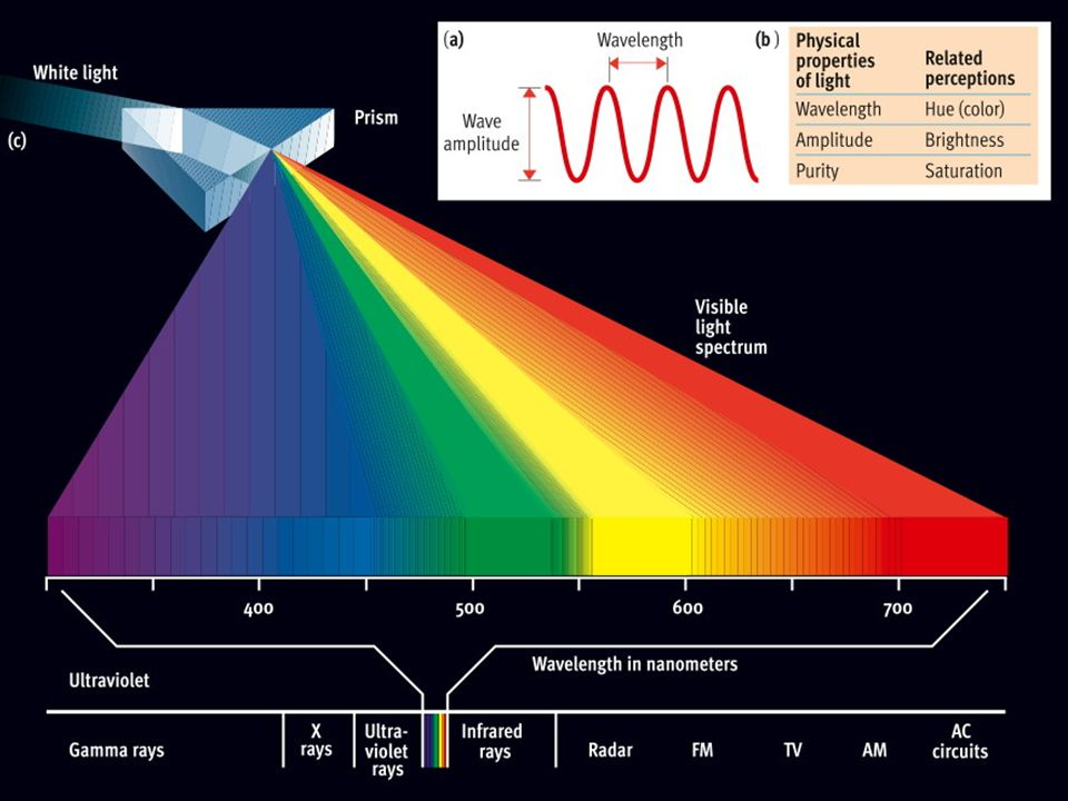physical light The waves, sound and light chapter of this high school physical science homework help course helps students complete their waves, sound and light.