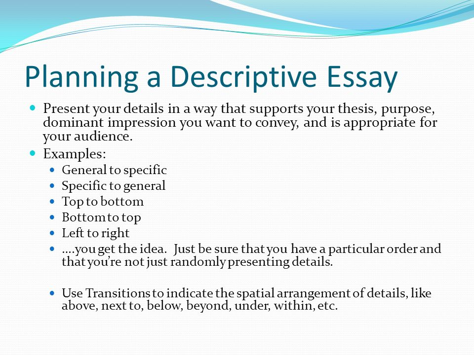 Descriptive Sample Essay