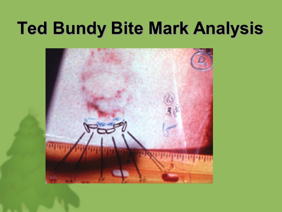 analysis of ted bundy Analysis of ted bundy serial killer monique victoria leston john jay college of criminal justice abstract this paper will be an analysis of theodore robert bundy a famous serial murderer who killed over a span of 4 years in the 70's.