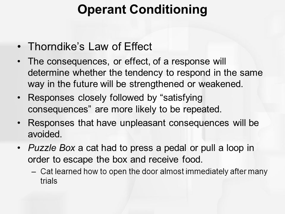thorndikes law of effect operant conditioning essay Free essay: operant conditioning in the criminal justice system after the early work of el thorndike, and his law of effect operant conditioning essay.