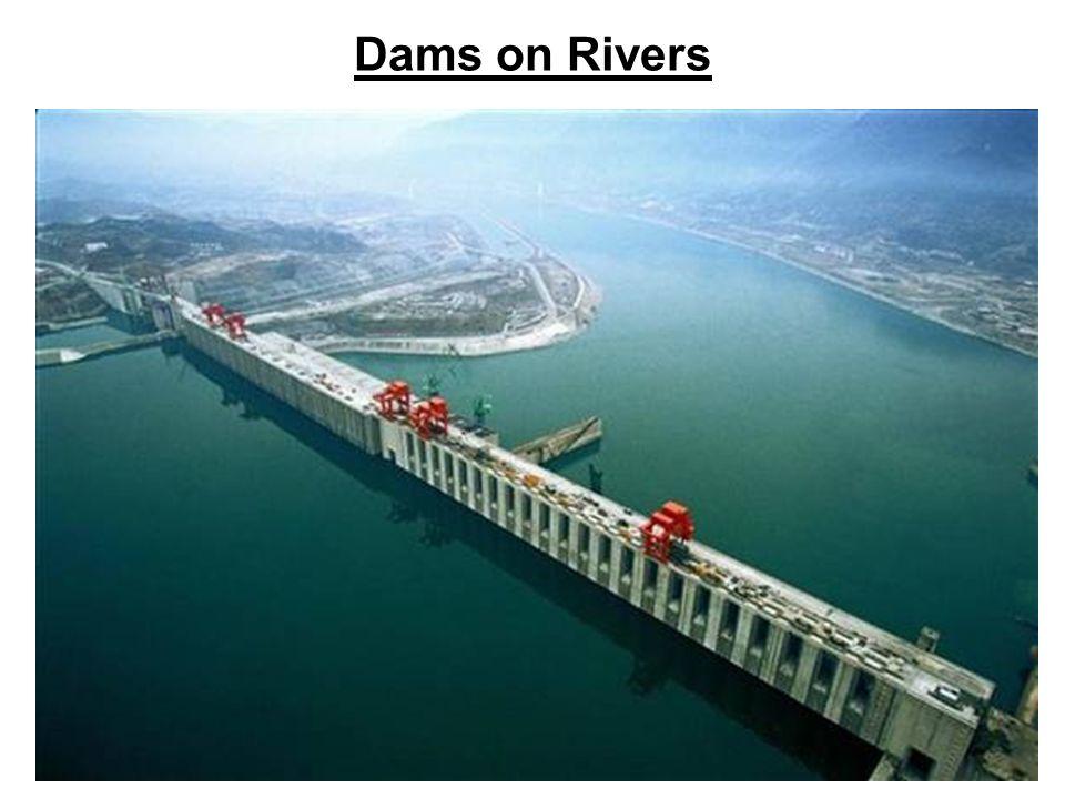 Dams Vs Natural Flow