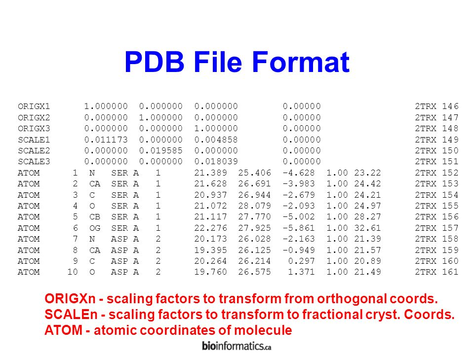 How to download pdb file
