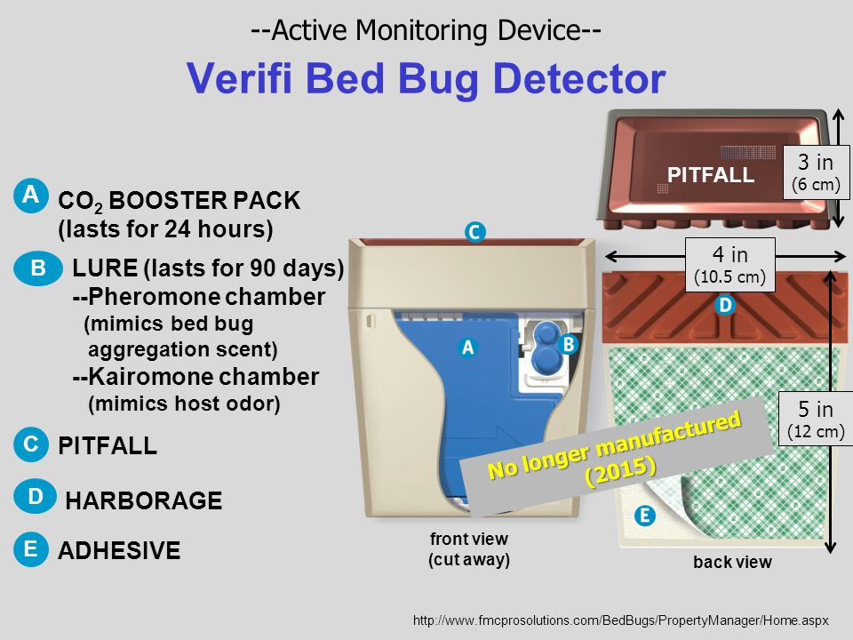 bug depot traps shot bed the home insect hg interceptor detector p hot count