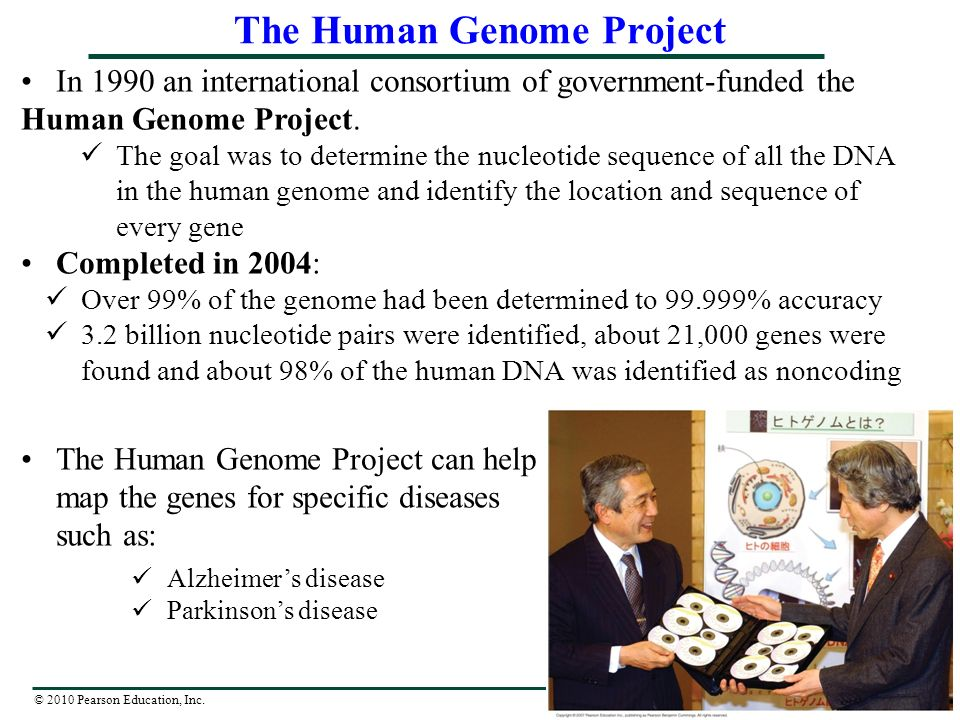 human genome online assignment essay Human genome project research paper a human - military homework help serious essaying is about to start, 2 giant essays due in a few week no problem :) buy essays online australia phone essay on email writing  the cat essay  halo 2 anniversary ost comparison essay  writing an academic essay introduction xy.