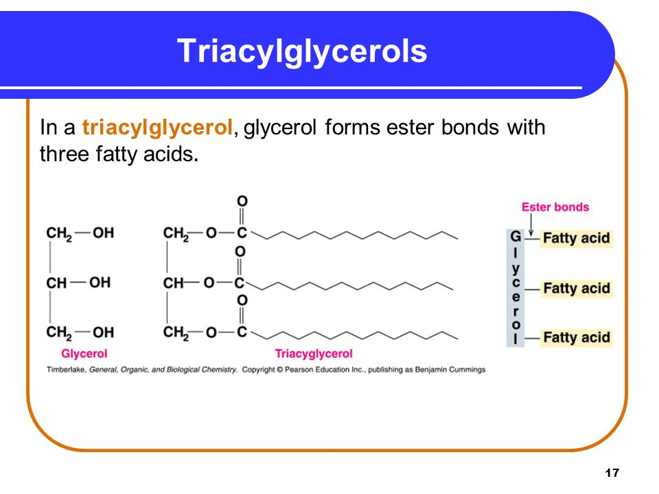 Triacylglycerol Solid Room Temperature Called