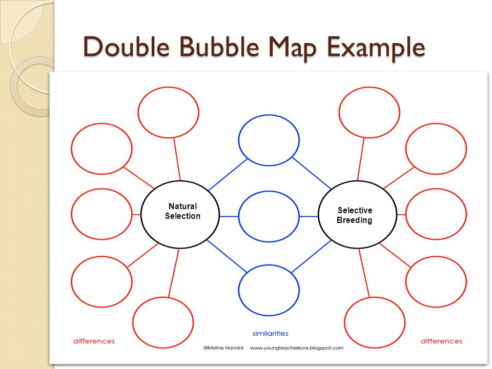 Natural selection vs selective breeding ppt video online download venn diagram example selective breeding natural selection 24 double bubble map example ccuart Image collections
