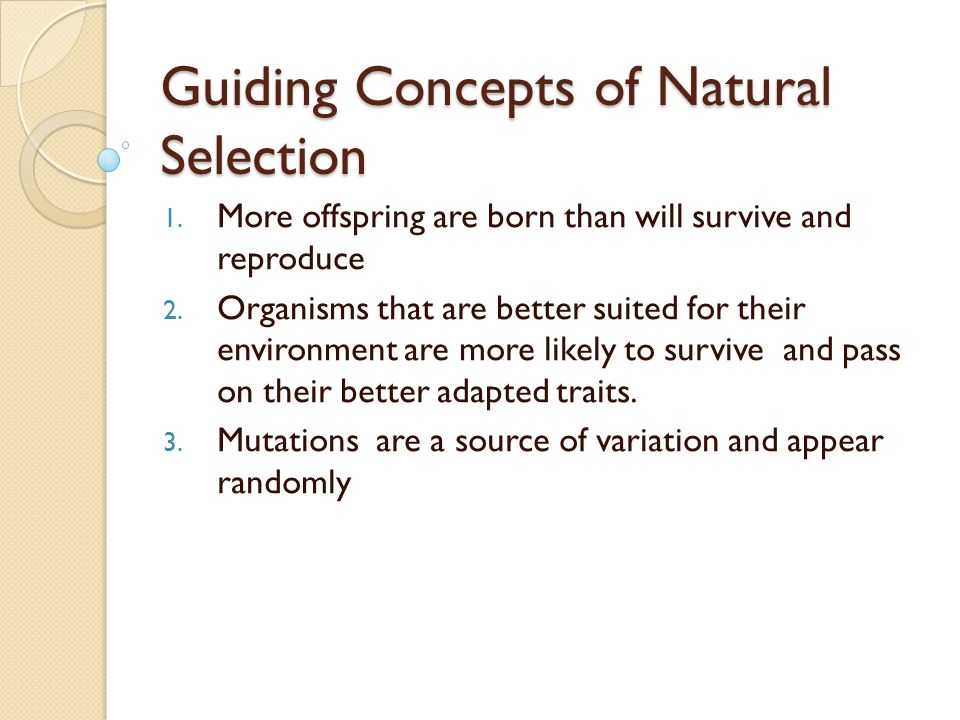 Natural selection vs selective breeding ppt video online download guiding concepts of natural selection ccuart Image collections