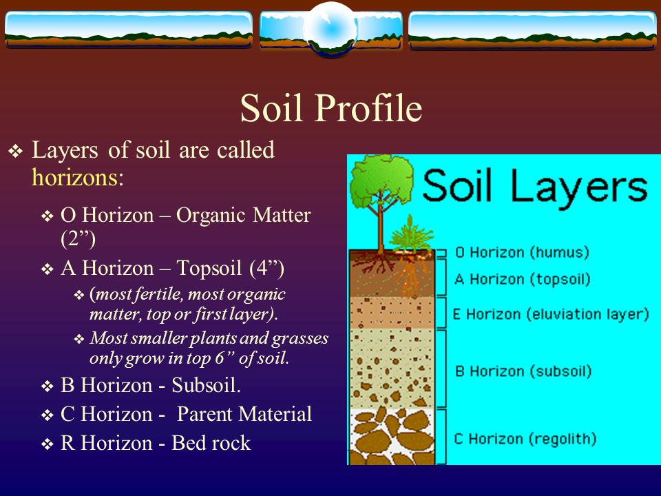 Top parent material layer images for pinterest tattoos for Why the soil forms layers in water