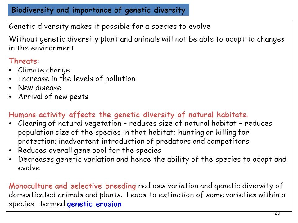 an introduction to the importance of biodiversity on earth This variety of life is known as biodiversity  it also plays an important role in  maintaining human health and well-being  earth's biodiversity is under threat  sadly  the destruction of natural habitats, introduction of foreign species,  pollution,.