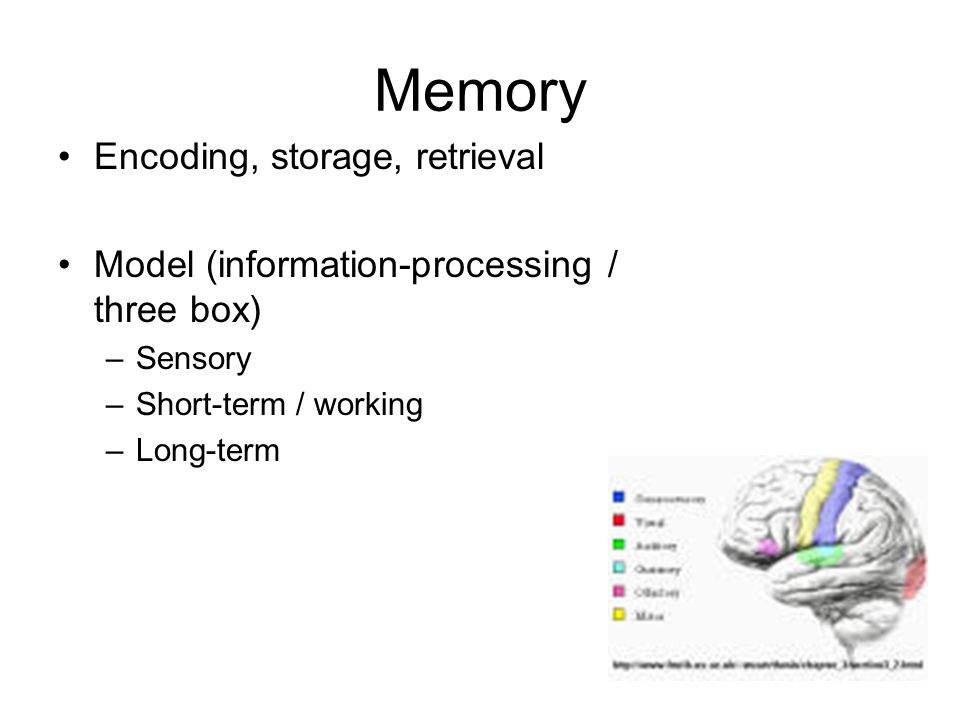 encoding storage and retrieval the processes And so, these four processes--attention, encoding, storage, and retrieval--undergird the learning that happens in all of our schools and classrooms, and the degree to which we understand them (scientifically or intuitively) influences the degree to which we can create the most effective learning environments.