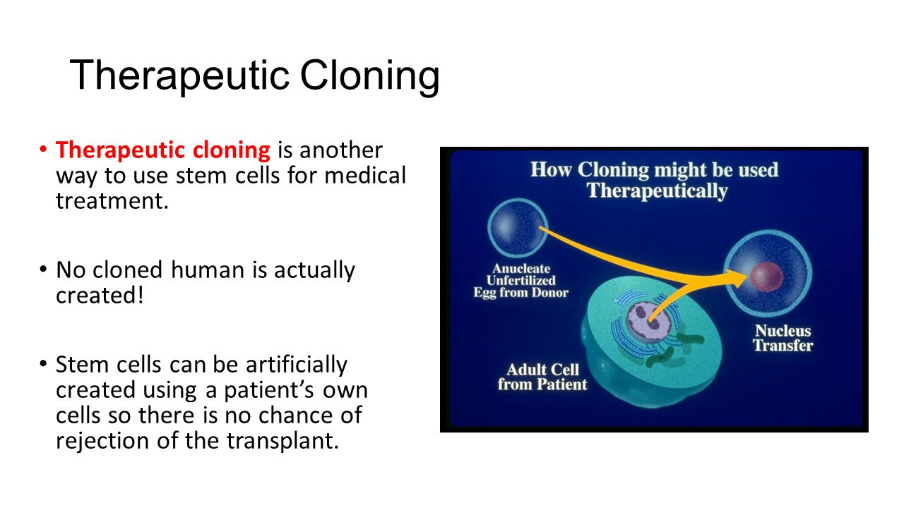 cloning for medicine In the future, therapeutic cloning will bring enhanced possibilities for organ  it is  asserted that the progress of medicine, hygiene, and nutrition.