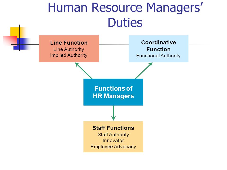 human resource managemeny Hapter 1: the role of human resources human resource management day to day you have just been hired to work in the human resource department of a small company.