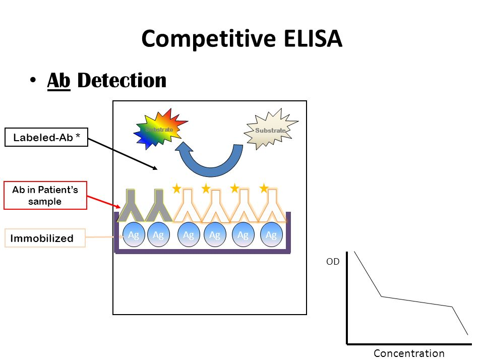 competitive elisa assay protocol