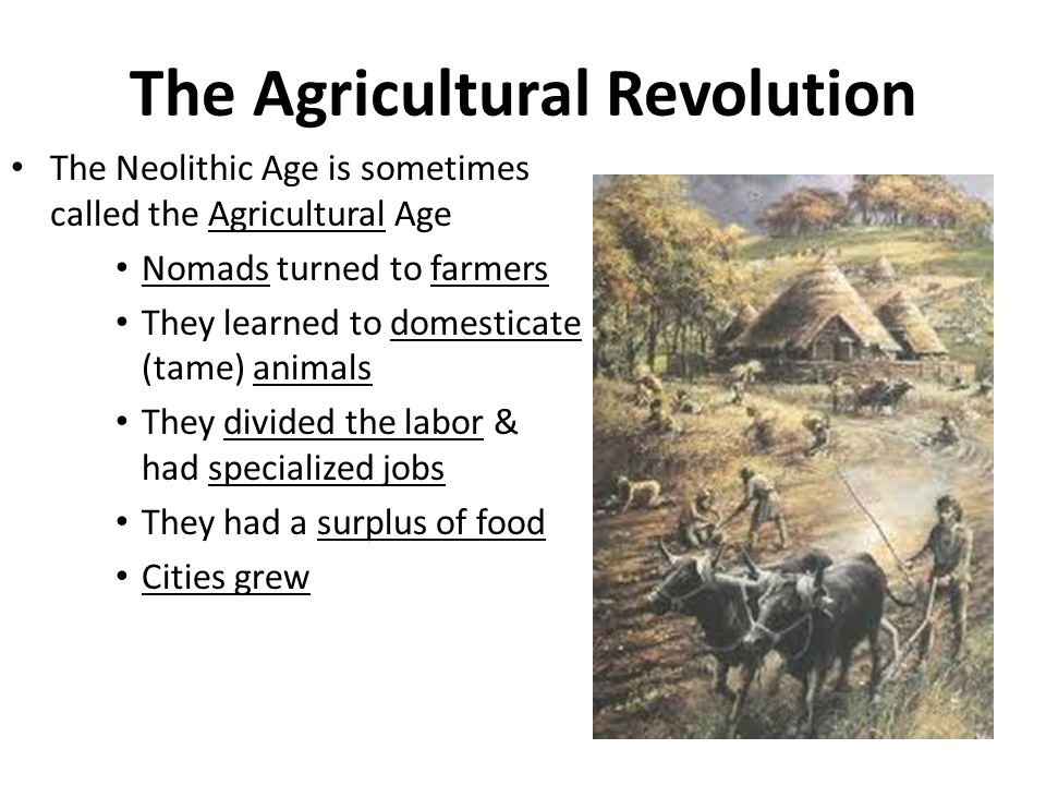neolithic agricultural revolution In this paleolithic & neolithic ages investigation students will evaluate the significance of the agricultural revolution through a one-page article and six images this lesson includes:1 an introduction powerpoint and debrief strategy, with answer key2.