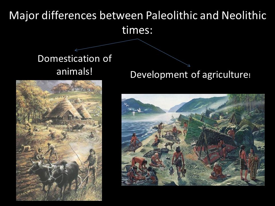 the differences between paleolithic and neolithic Neolithic definition, of, relating to, or characteristic of the last phase of the stone  age, marked by the domestication of animals,  compare mesolithic, paleolithic.