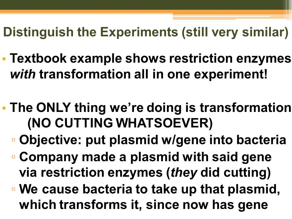 pblu transformation lab Lab 6a – bacterial transformation & ampicillin resistance introduction: bacterial transformation occurs when a bacterial cell takes up foreign dna and incorporates it.