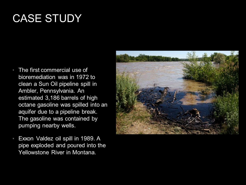 exxon valdez ppt | Exxon Mobil | Oil Spill - Scribd