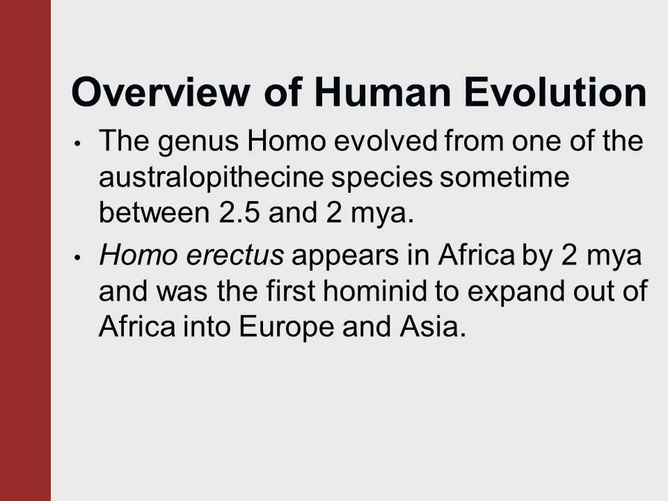 an overview of hominid species and human evolution So, the nomenclature for analysis of human evolution and our agreed is human or a human ancestor species in the com/what-is-a-hominin.