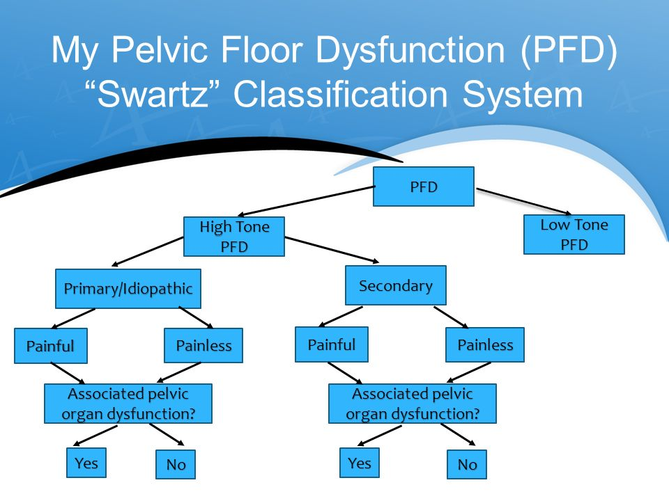 ... My Pelvic Floor Dysfunction Pfd Swartz Clification System ...