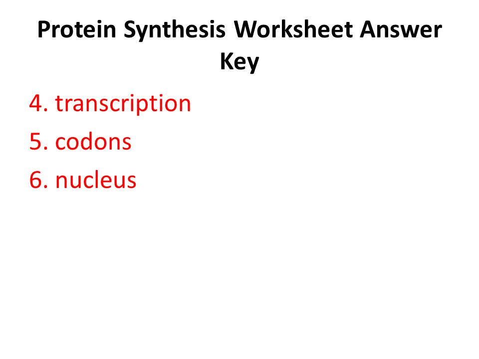 Protein Synthesis Worksheet Answer Key - ppt video online download