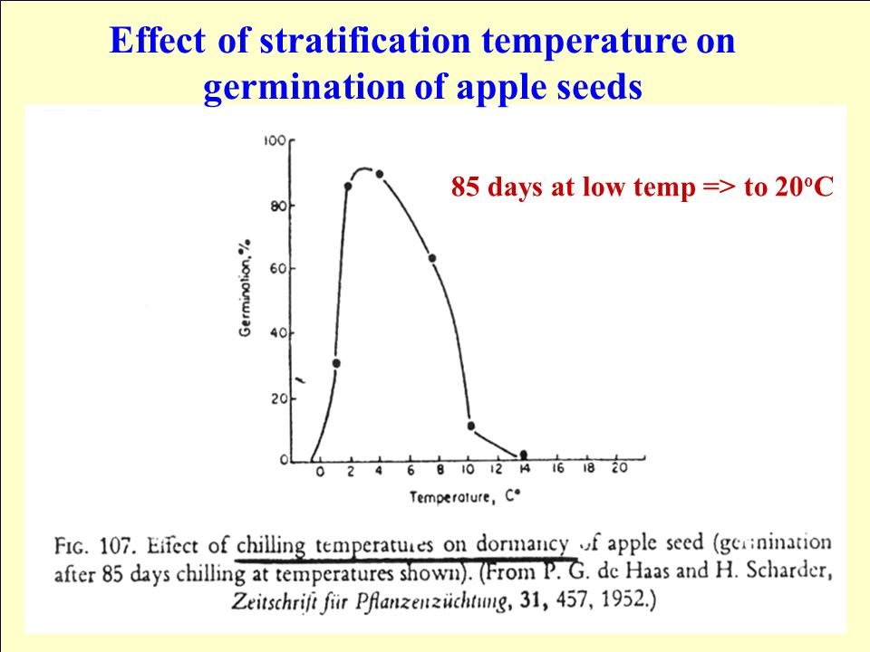 mercury effect on seed germination Toxic effects research of copper on the germination in mercury, lead and other heavy important to study the toxic effect of heavy metal in the stage of seed.