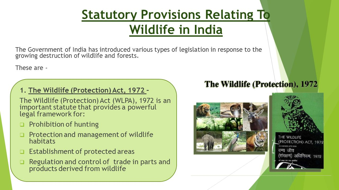 Statutory Provisions Relating To Wildlife in India