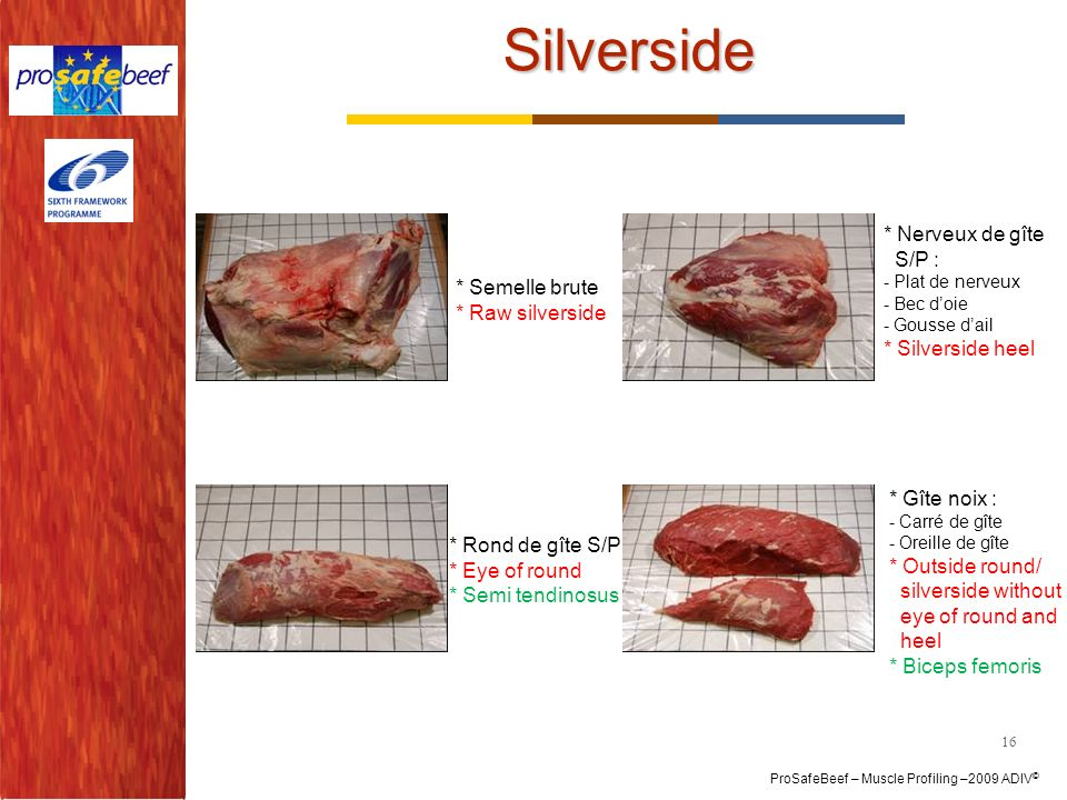 Silverside * Nerveux de gîte S/P : * Semelle brute * Silverside heel