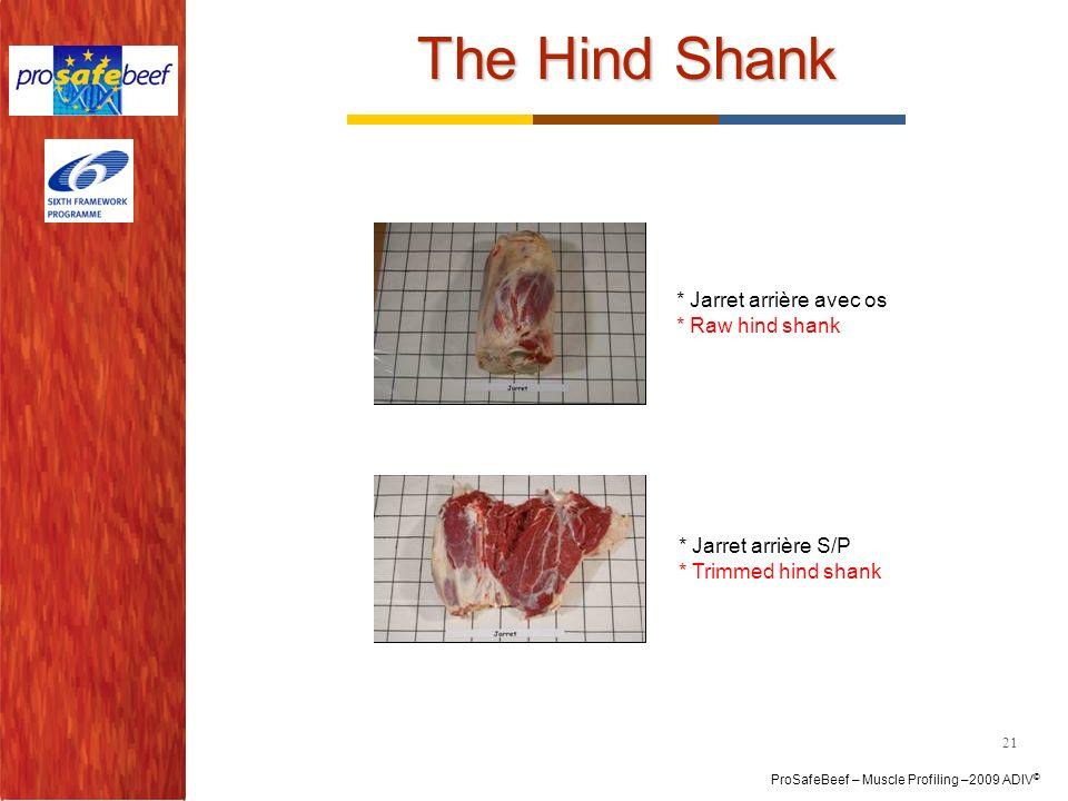 The Hind Shank * Jarret arrière avec os * Raw hind shank