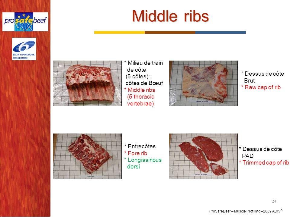 Middle ribs * Milieu de train de côte (5 côtes) : côtes de Bœuf