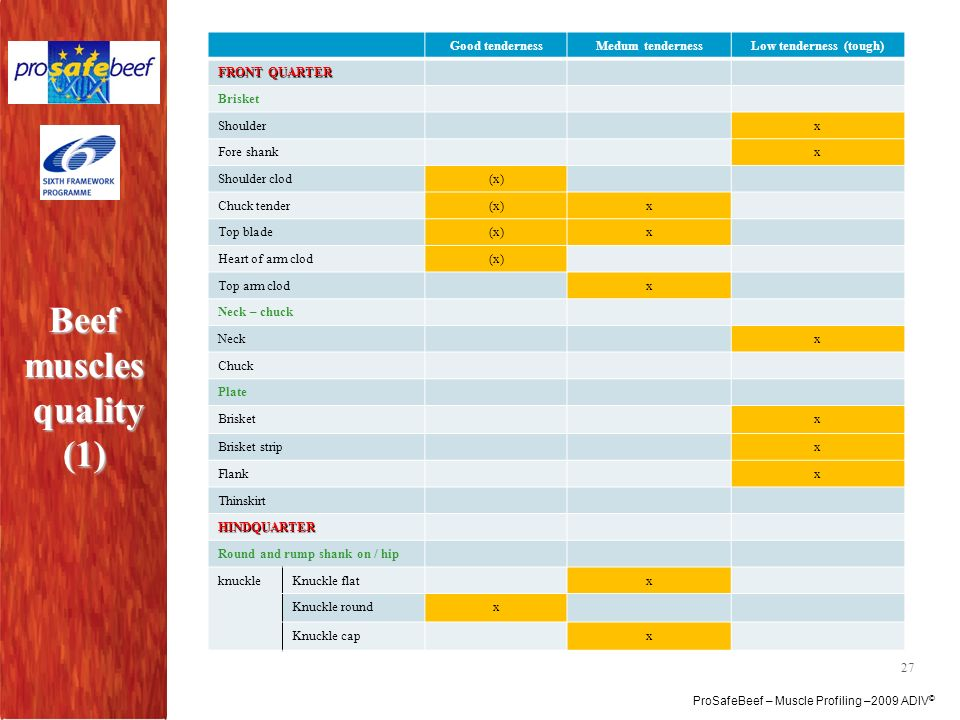 Beef muscles quality (1)
