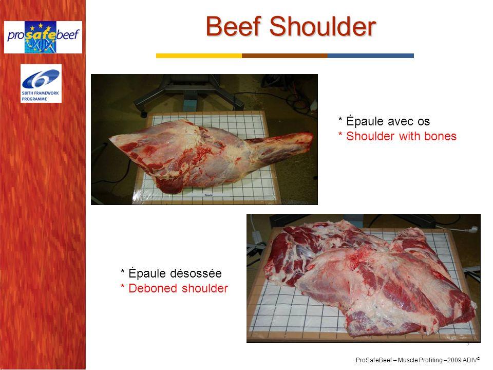 Beef Shoulder * Épaule avec os * Shoulder with bones * Épaule désossée