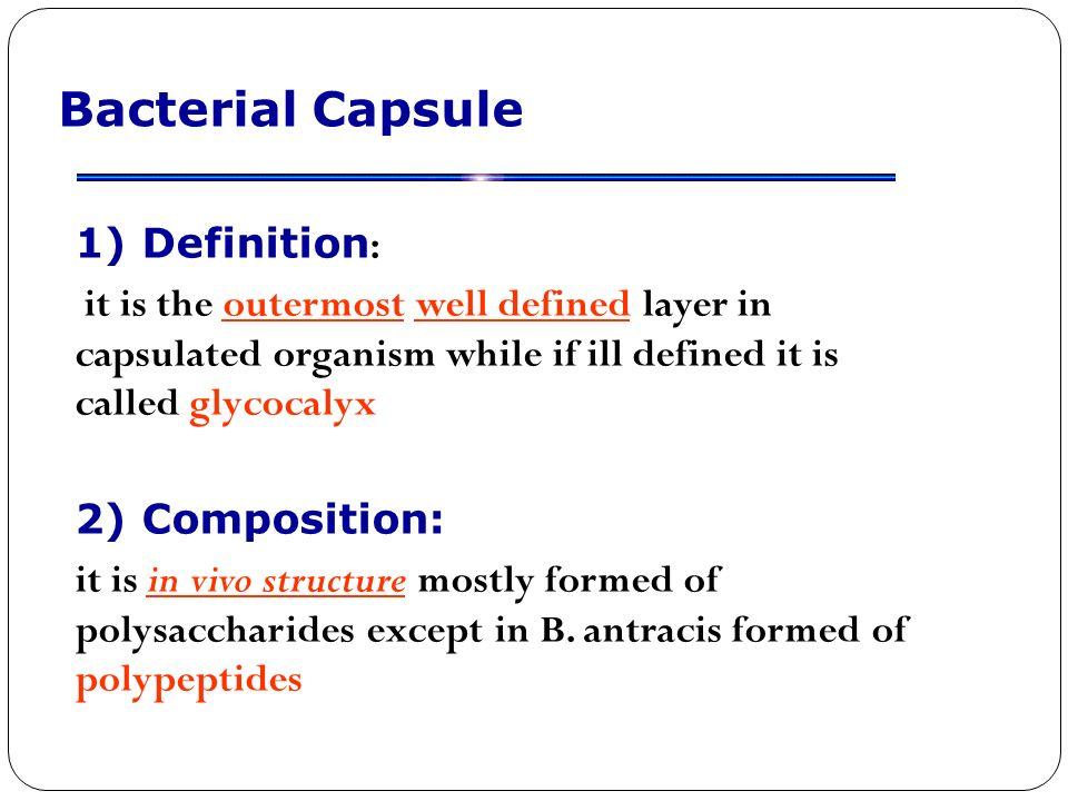 Bacterial morphology. - ppt video online download