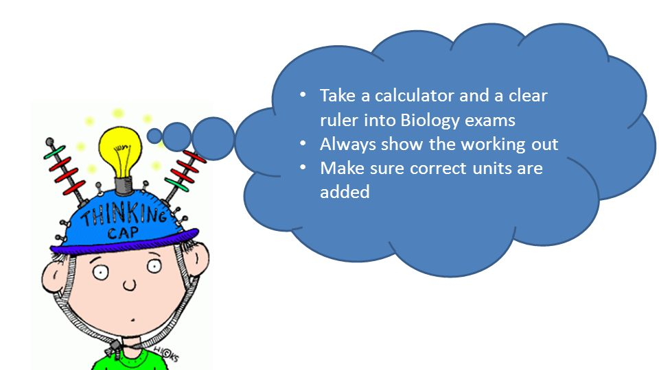 Take a calculator and a clear ruler into Biology exams