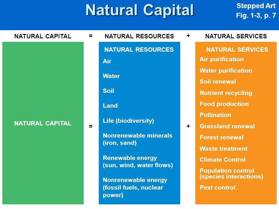 Natural Capital Stepped Art Fig. 1-3, p. 7 NATURAL CAPITAL =