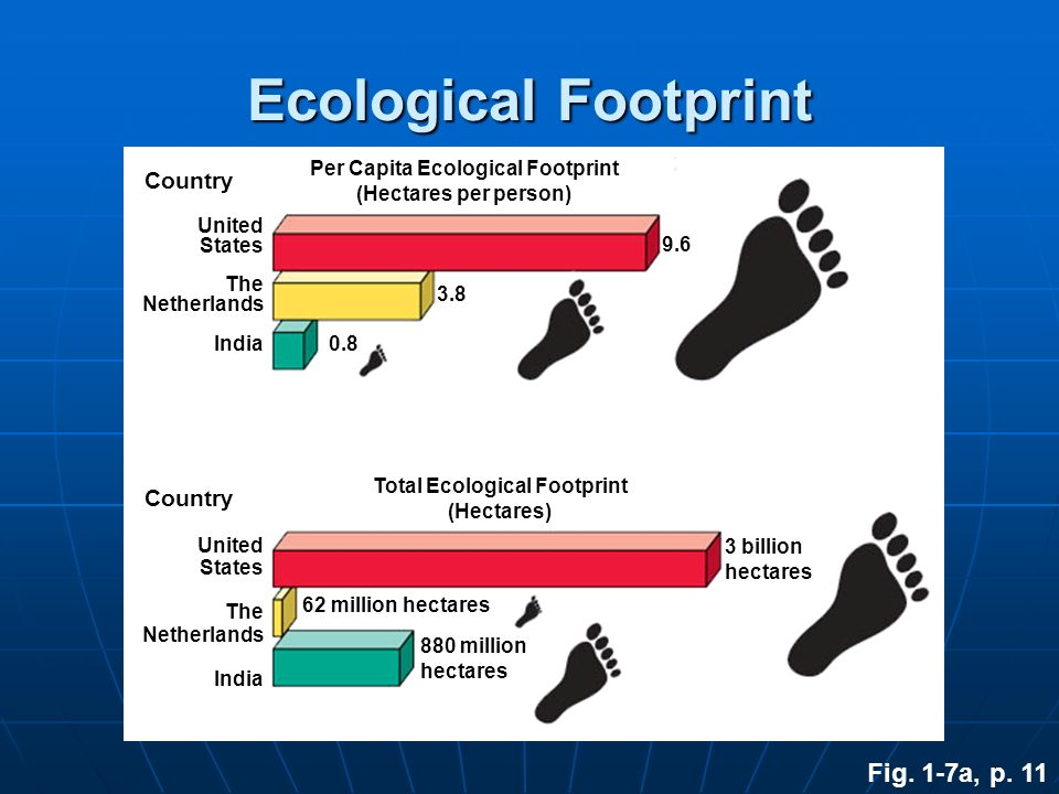 Per Capita Ecological Footprint Total Ecological Footprint