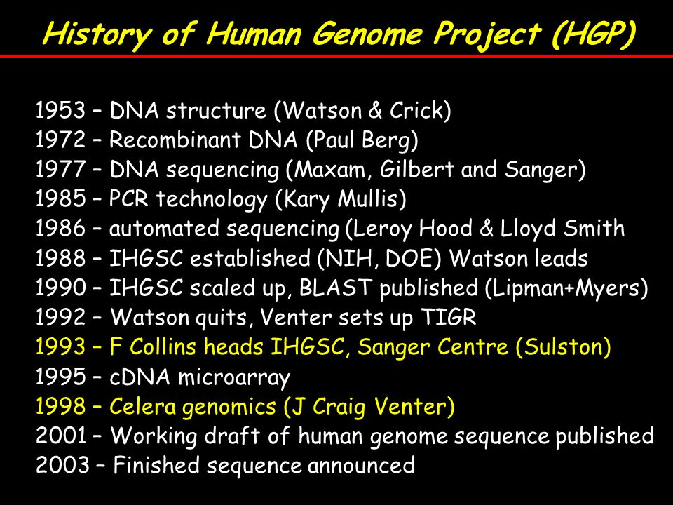 history of human genome project essay Free essay: the human genome project the human genome project is a  to  dramatically increase our understanding of human evolution and variation, and.