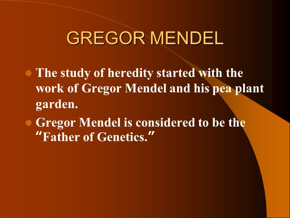 gregor mendel and his study on genetics Gregor mendel was an austrian monk who discovered the basic principles of heredity through experiments in his garden mendel's observations became the foundation of modern genetics and the study .