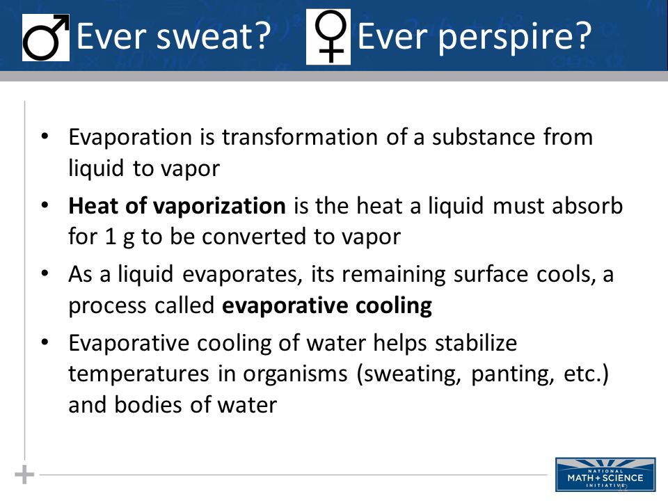 Why Alcohol Evaporates At Room Temperature