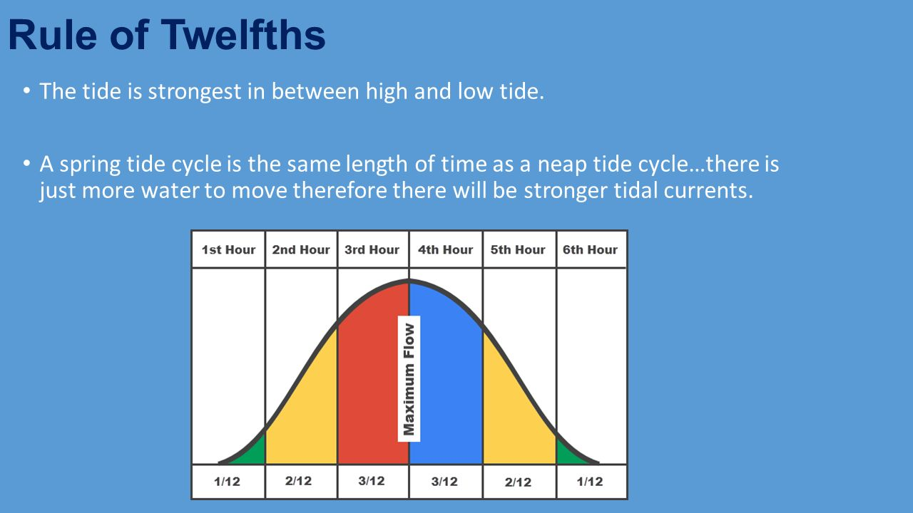 Open Water Swim Safety Ppt Video Online Download