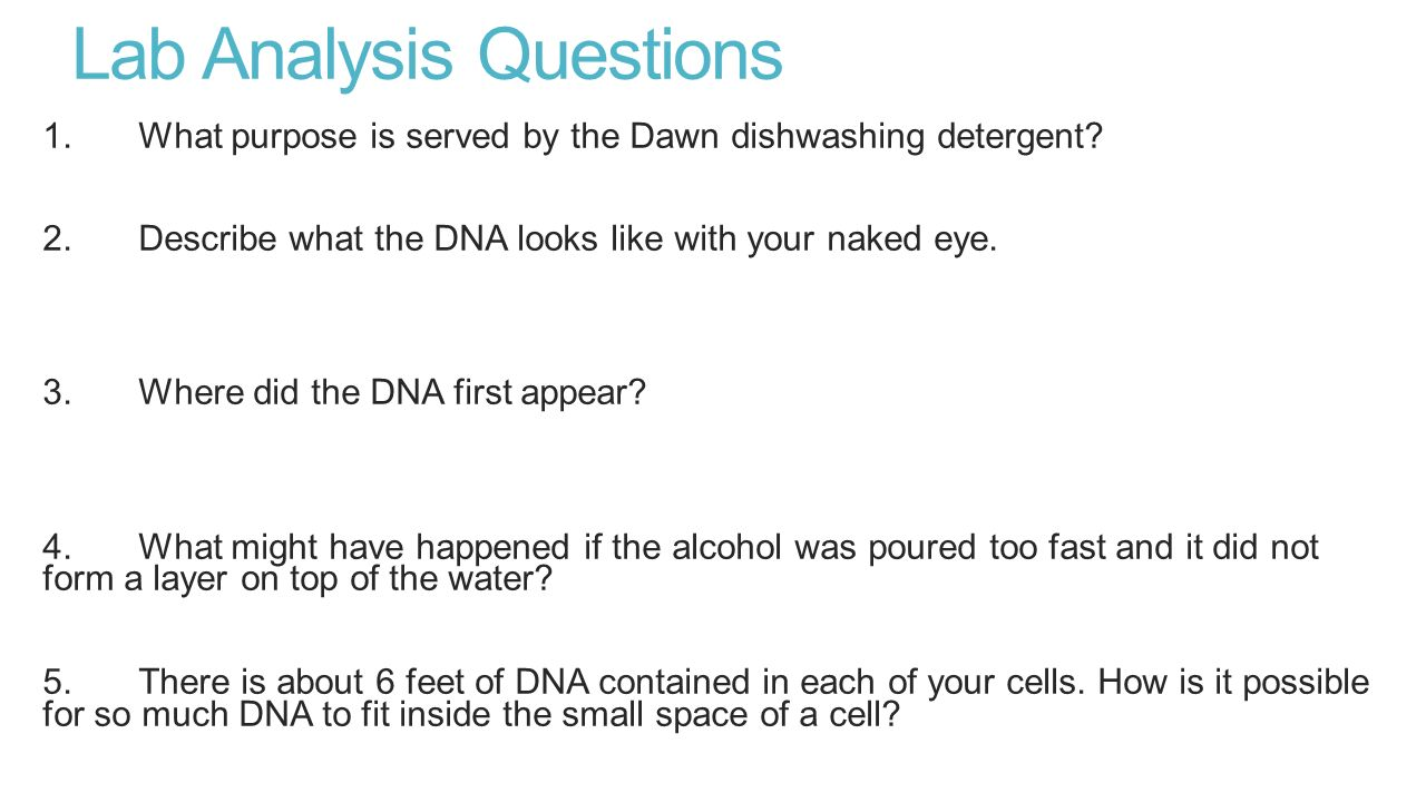 Strawberry DNA Extraction Lab - ppt video online download