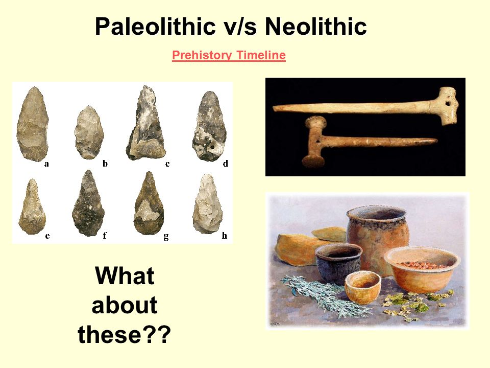 compare and contrast neolithic and paleolithic Comapare and contrast the paleolithic and neolithic era  topics: paleolithic compare and contrast neolithic and paleolithic essay.