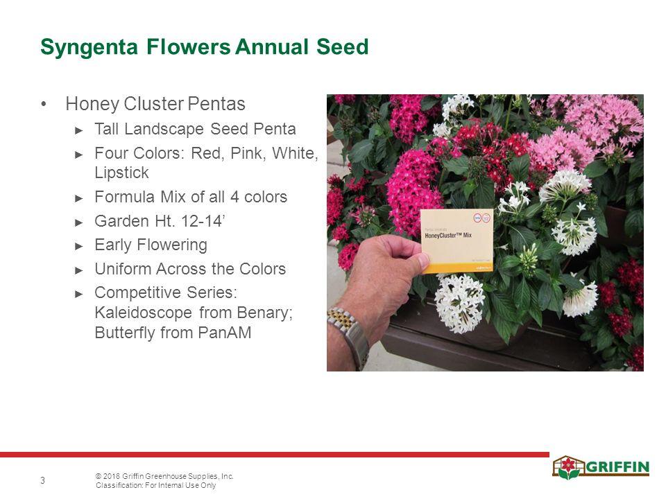 3 Syngenta Flowers Annual Seed