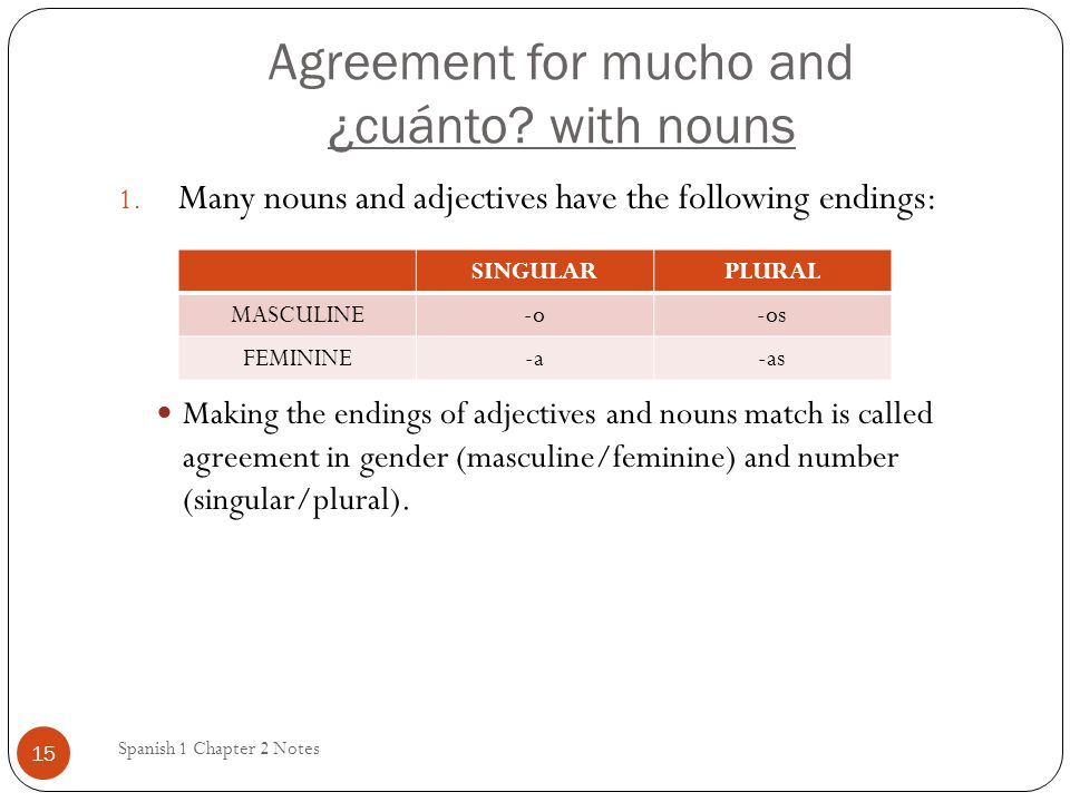 Agreement for mucho and ¿cuánto with nouns
