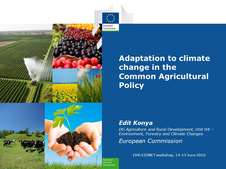 climate change adaptation in agriculture and