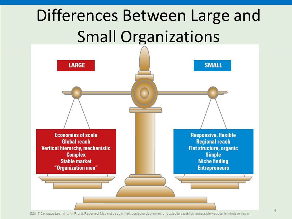 small and large business differences People management specialists, investors in people, examine the differences between large and small organisations, noting that there is more to it than just size.