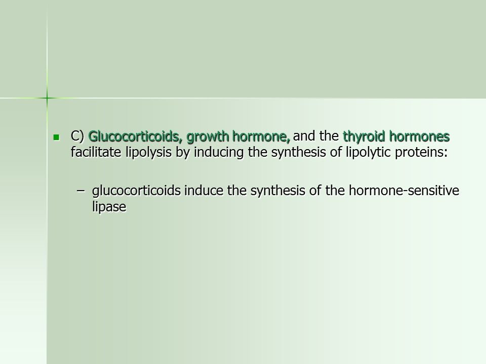 C) Glucocorticoids, growth hormone, and the thyroid hormones facilitate lipolysis by inducing the synthesis of lipolytic proteins: