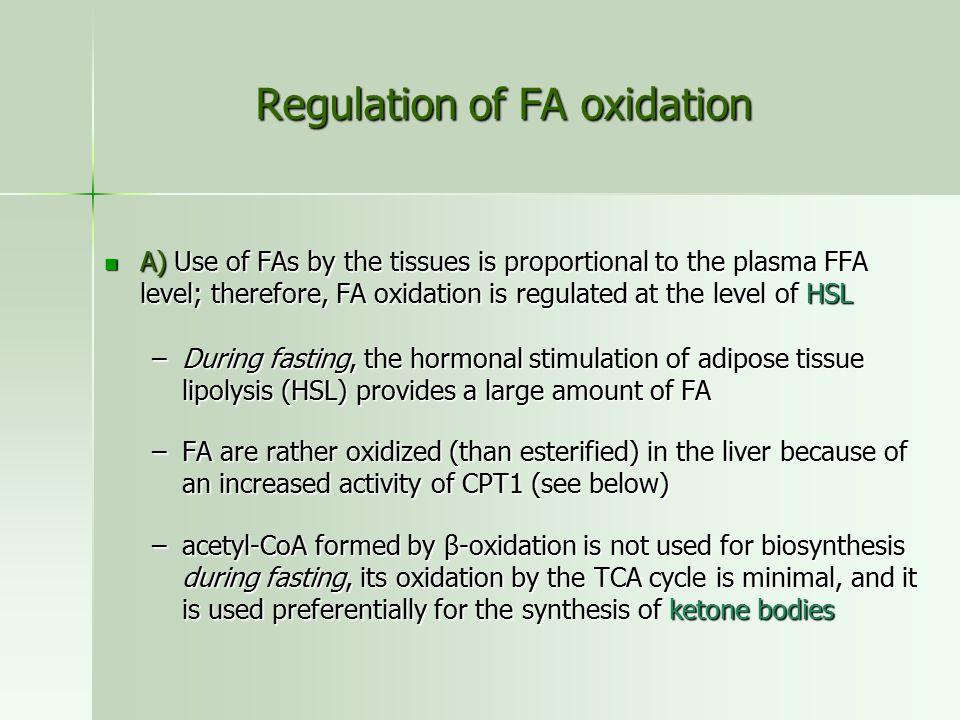Regulation of FA oxidation
