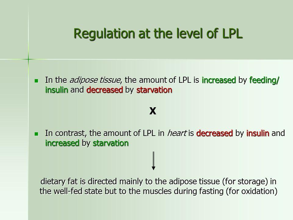 Regulation at the level of LPL